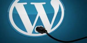 Usar WordPress principio
